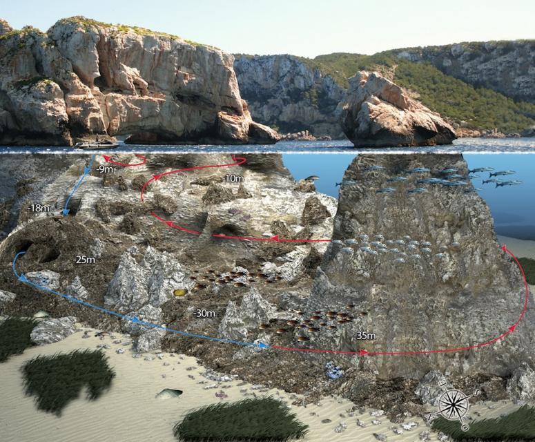Dive Site Ses Margalides, Ibiza